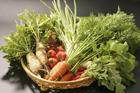 笊に盛った野菜集合