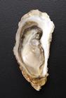 宮城産牡蠣