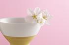 湯飲み茶碗と桜の花