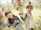 桜に触れる新入学の女の子2人