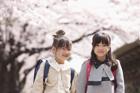新入学の女の子2人と桜