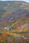 山形 姥ヶ岳紅葉
