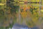山形 月山地蔵沼紅葉
