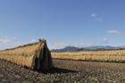 秋の田園風景 干稲