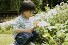 庭の男の子