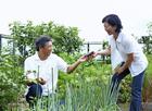 屋上菜園のミドル夫婦