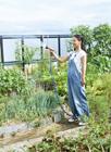 屋上菜園のミドル女性
