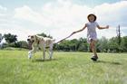 犬と芝生を駆ける女の子