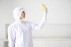 野菜を見る食品衛生服の女性