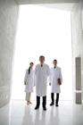 扇形に立つ白衣の男女3人
