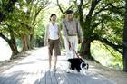 並木道で犬の散歩するミドルカップル