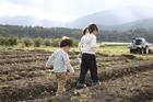 畑を歩く後姿の子供2人