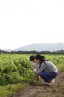 田園の畦道で農作物に触れる母親と男の子