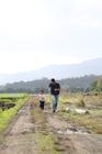 田園の畦道を駆ける女の子と父親