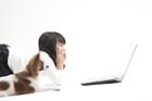 パピヨンとノートパソコンを見る女の子