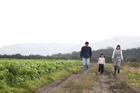 田園の畦道を歩く3人家族